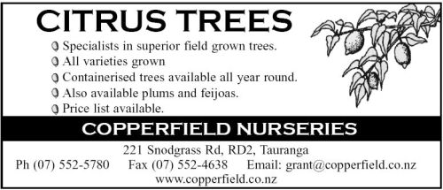 Copperfield Nurseries Citrus trees